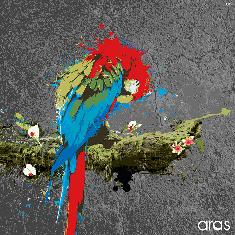 Aras Vinylcover Front