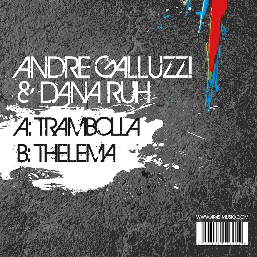 Aras Vinylcover Back