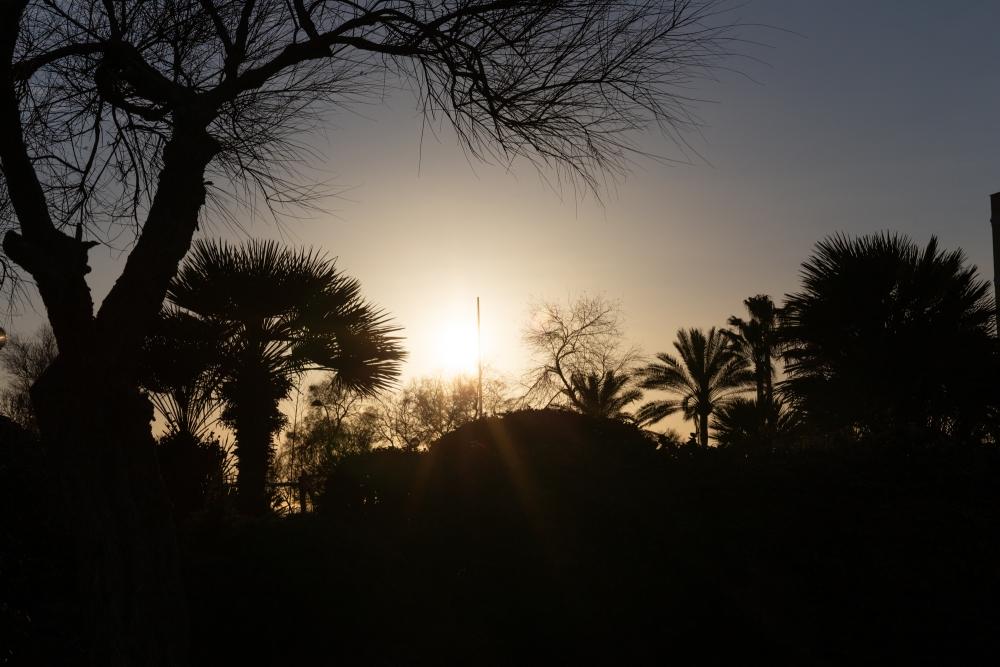 Mallorca19_IMG_5579