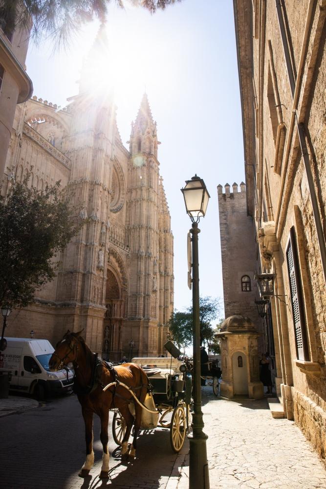 Mallorca19_IMG_5987