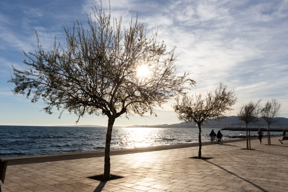 Mallorca19_IMG_6262