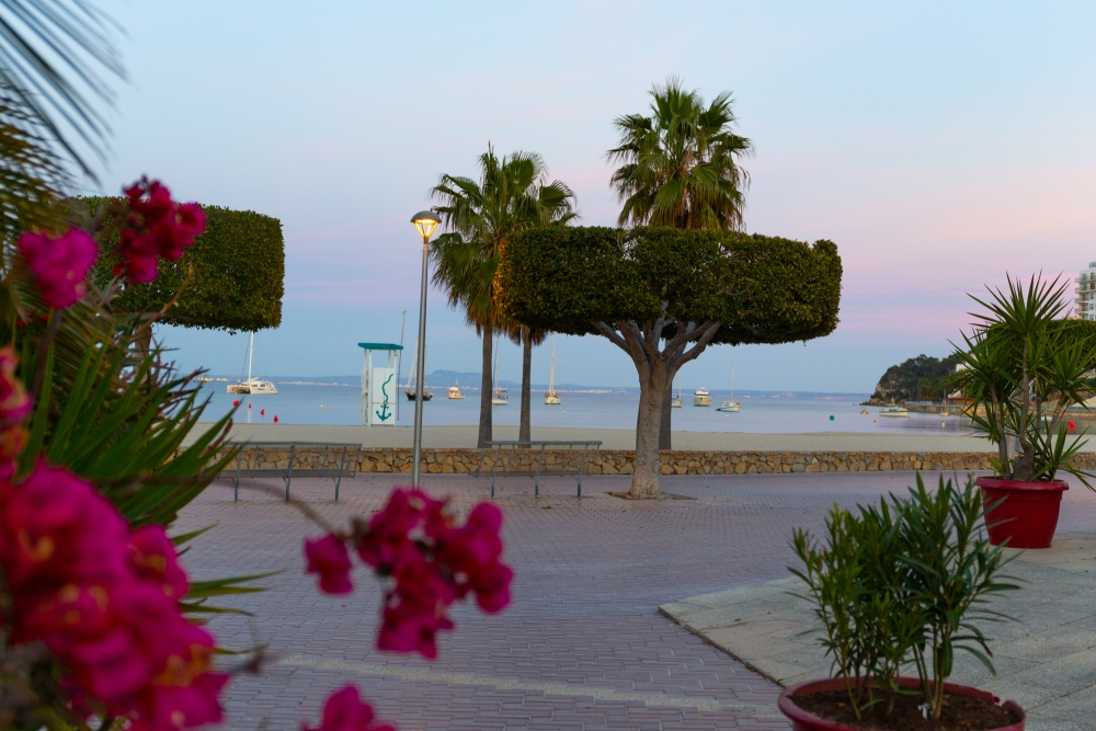 Mallorca19_IMG_6328