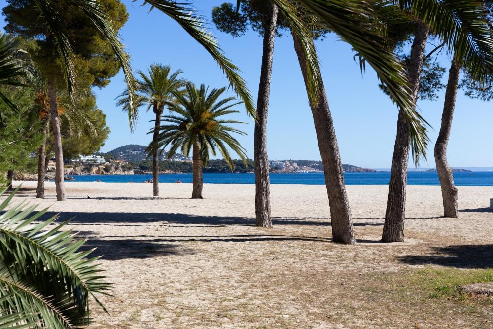 Mallorca19_IMG_6615